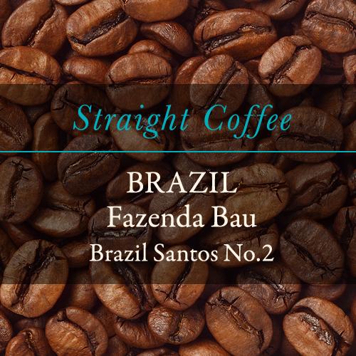 〈ブラジル〉  サントス No.2  豆・粉