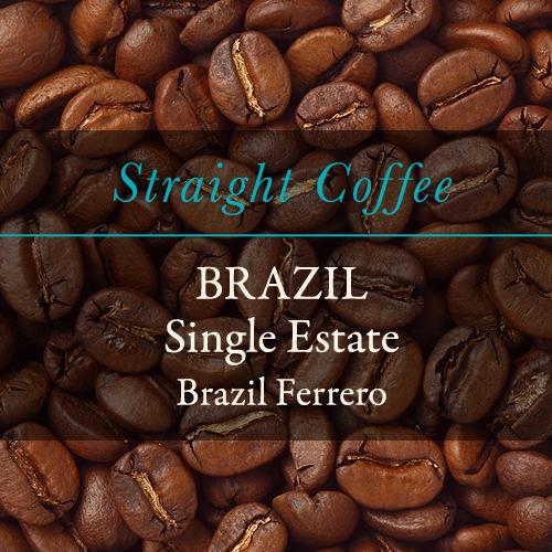 〈ブラジル〉フェレーロ