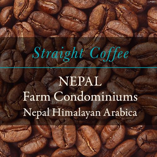 〈ネパール〉ヒマラヤンアラビカ